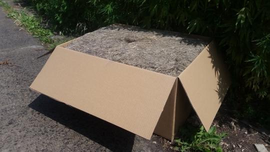 Kalfaterfaser, lose Fasern, 10 kg Karton